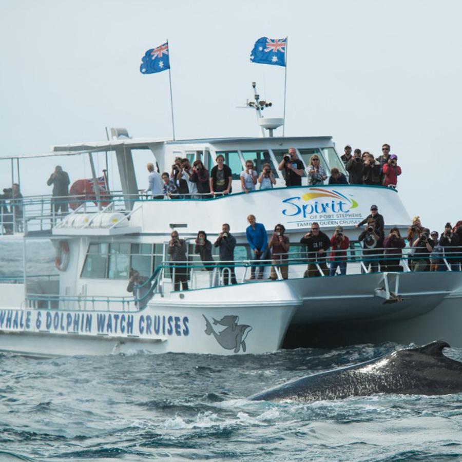 포트스테판-고래투어